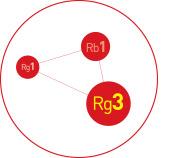 Tiêu chuẩn hóa thành phần Rg3