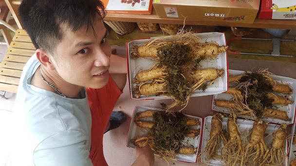 Chất lượng sâm tươi 5 củ 1kg luôn được đảm bảo từng củ về chất lượng và nguồn gốc xuất Hàn Quốc