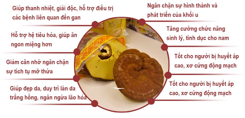 Đối tượng sử dụng và những tác dụng ưu Việt của Nấm linh chi Daedong Hàn Quốc