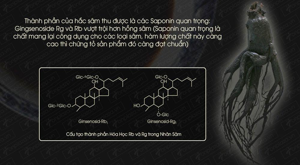 Thành phần saponin trong Hắc sâm Hàn Quốc tốt cho sức khỏe